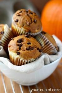 Chocolate-Chip-Pumpkin-Muffins-with-Cream-Cheese-Swirl-682x1024